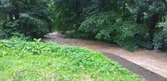 řeka 29.06.2020