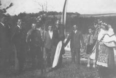"""""""Lípa svobody"""" zasazena květen 1946"""